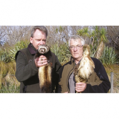 Predator and prey: Steve Playle, pest animal officer with Greater Wellington Regional Council (left), with a ferret trapped at Matthews Lagoon and DU president and wetland expert John Cheyne, with a stuffed Australasian bittern.    Photo: GWRC.