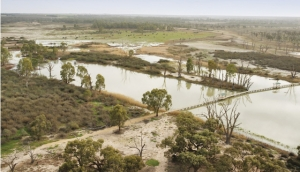 Water wonder: Flooding the wetlands at Banrock Station