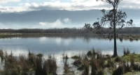 For those of you who have not visited Wario wetlands in southern Wairarapa, just look at the amazing scenery in store for you.