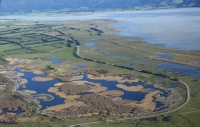 Birds eye: From the left, Mathews Lagoon, Boggy pond, Wairio next to Lake Wairarapa. Years ago all three wetlands were connected