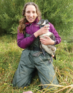 Tagging Canada geese is one of the activities  that Emma is involved in.