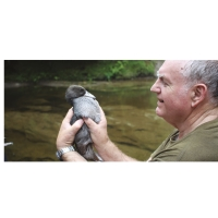 Bob Jordan and whio: – Bob Jordan, chief eco-warrior, with a blue duck.