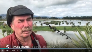 Ross Cottle being interviewed at the Wairio Wetland in the Wairarapa